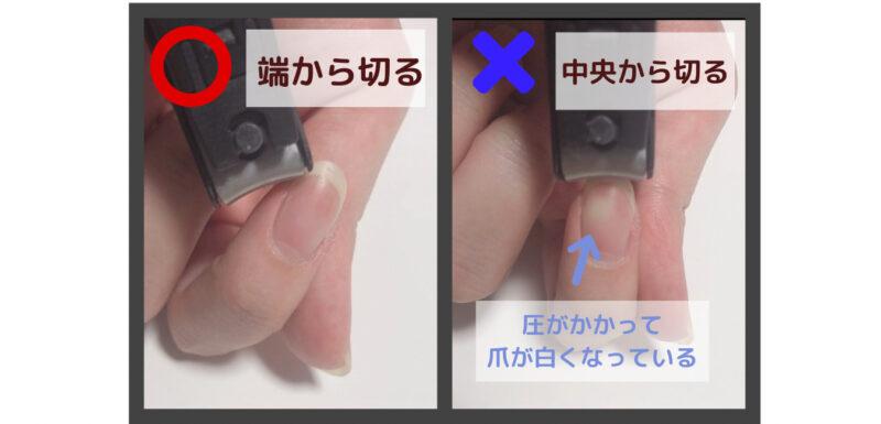 爪切りの使い方